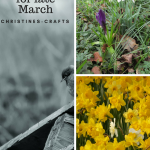 Garden Tasks for Late March