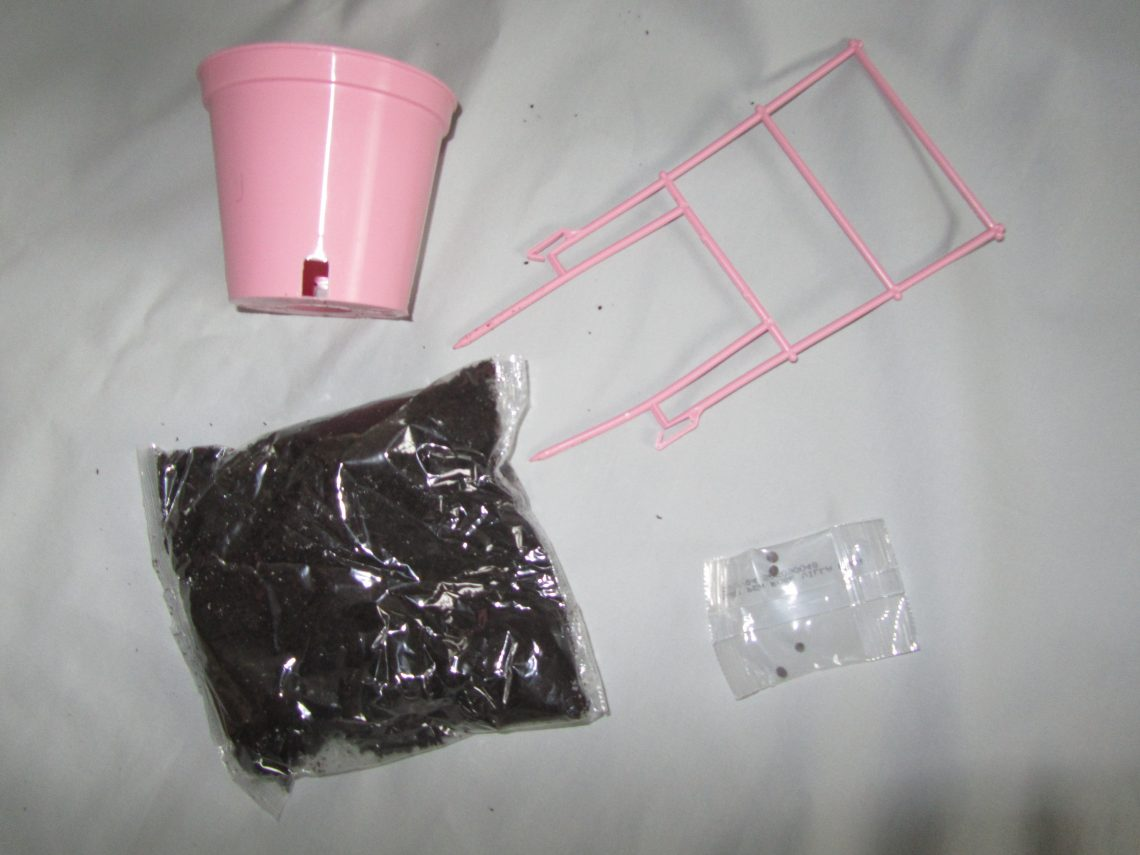 Sweet pea kit contents