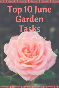 Top 10 June Garden Tasks