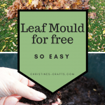 Leaf Mould for free