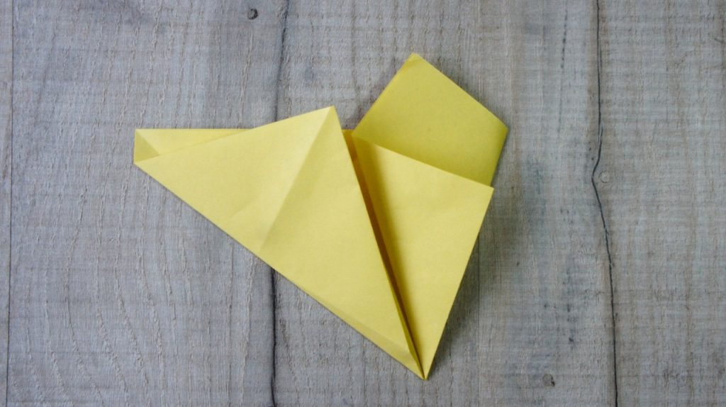 Fifth Origami Fold