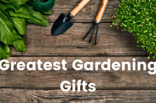 Greatest Gardening Gifts