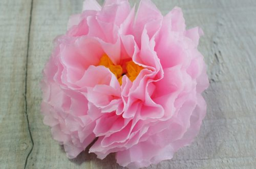pink peony tissue paper flower
